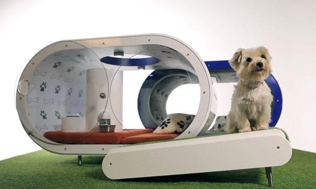 Comp. Samsung Dream DogHouse