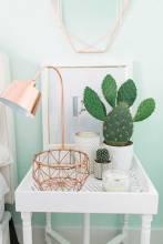 cactus17