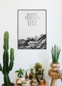 cactus24