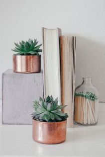 cactus33