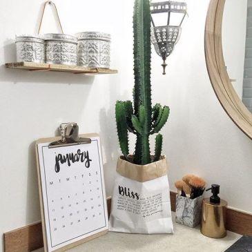 cactus37